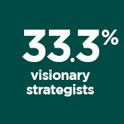 33.3% Visionary Strategists portrait
